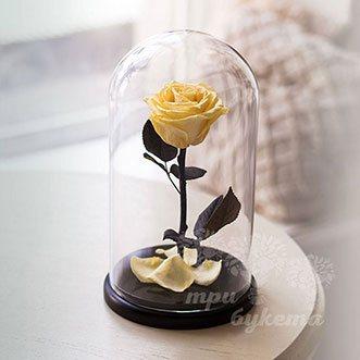 Желтая роза в колбе 26 см