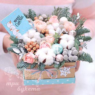 Бруния в новогодней коробке