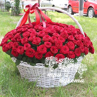 201 красная роза в корзине