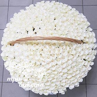 501 белая роза в корзине