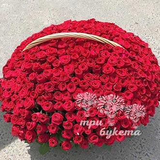 501 красная роза в корзине